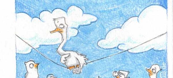 Vögelei auf der Leine