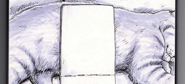 Daily Illu Tag 52 - Bild in Bild mit Skizzenbuch und Kater - Ausschnitt