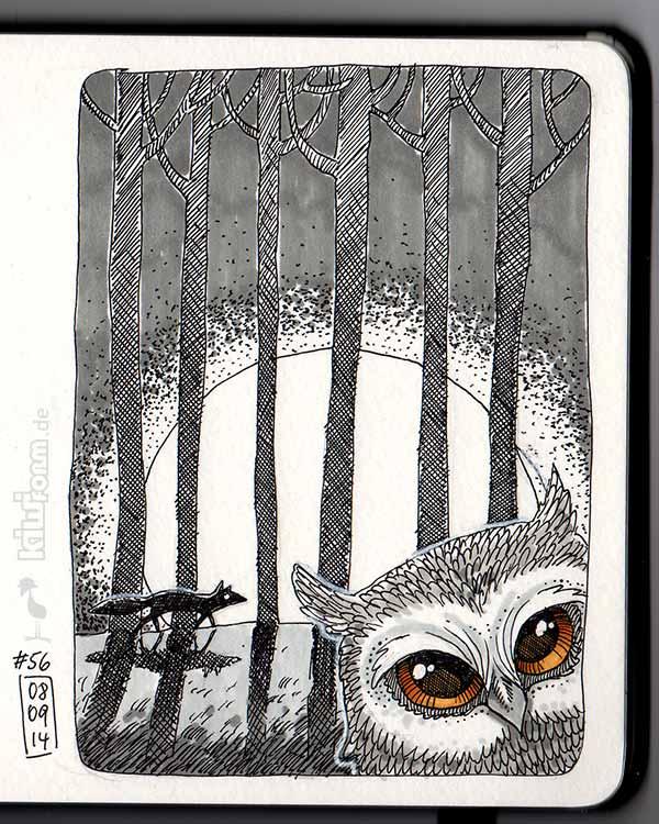 Wenn sich Fuchs und Eule Gute Nacht sagen - Daily Illustration Tag 56