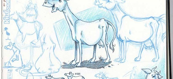 Kuh-Skizzen die II. - nachdem letztens der Kopf dran war, ist es heute der Körper der Kuh - Daily Illu #66 - Nadine Reitz